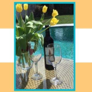 Wine Glasses +GIFT 😁